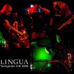 Lingua  –  Tantogården 4/10 2008
